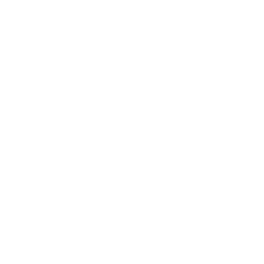 IFE_LOGO_BRANCO